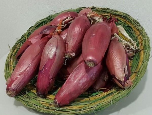 Zwiebeln rot aus Rumänien / Ceapa rosie